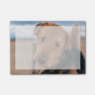 Bloco De Notas Retrato de Airedale Terrier 2