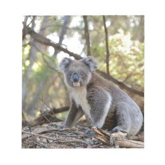 Bloco De Notas Urso de Koala cinzento e branco