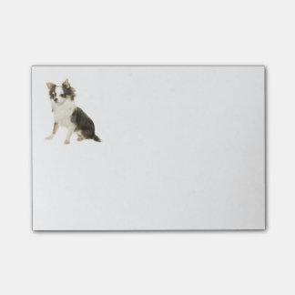 Bloco Post-it Cão de filhote de cachorro longo da chihuahua do