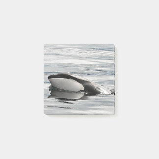 Bloco Post-it Cargo--notas Flirty da vitela da orca
