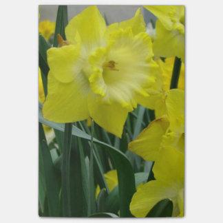 Bloco Post-it daffodil-22.JPG