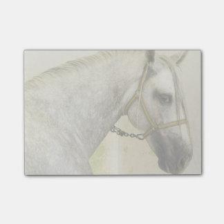 Bloco Post-it Dapple o cavalo andaluz cinzento