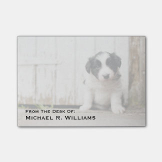 Bloco Post-it Filhote de cachorro de border collie