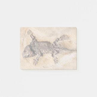 Bloco Post-it Fóssil de dinossauro