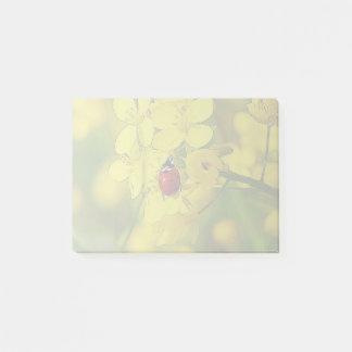 Bloco Post-it Joaninha amarelo do vermelho da boa sorte da flor