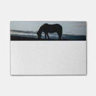 Bloco Post-it Notas de post-it islandêsas do cavalo