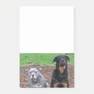 Bloco Post-it Notas dos amigos de Pitbull e de Rottweiler