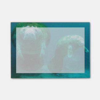 Bloco Post-it Peixe-boi da mãe com sua vitela em Crystal River