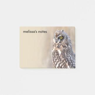 Bloco Post-it Retrato de uma coruja Curto-Orelhuda