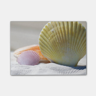 Bloco Post-it Seashells na areia branca