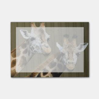 Bloco Post-it Seattle, Washington. Dois girafas
