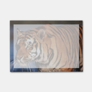 Bloco Post-it Tigre de India, Bengal (Panthera Tigris) 2