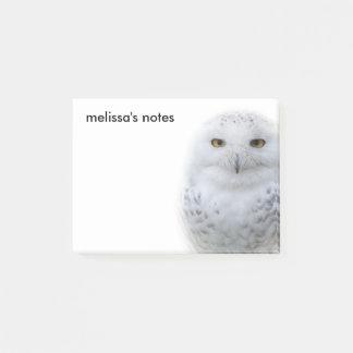 Bloco Post-it Um encontro nevado da coruja