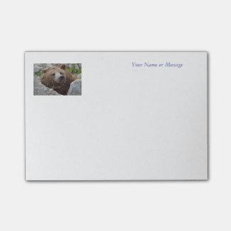 Bloco Post-it Urso de Kodiak