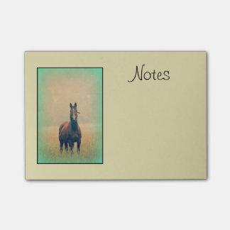 Bloquinho De Notas Cavalo de baía que está em um campo