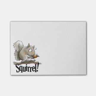 Bloquinho De Notas Notas de post-it do esquilo