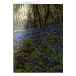 Bluebells do cartão na madeira com raio de sol