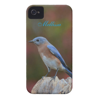 Bluebird excitante capinhas iPhone 4