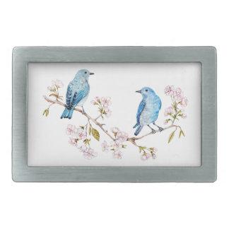 Bluebirds da montanha no ramo de Sakura