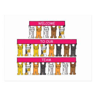 Boa vinda a nossa equipe, gatos dos desenhos cartão postal