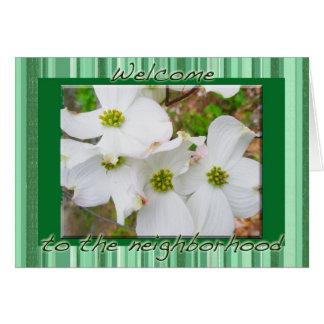 Boa vinda das flores do Dogwood ao cartão da