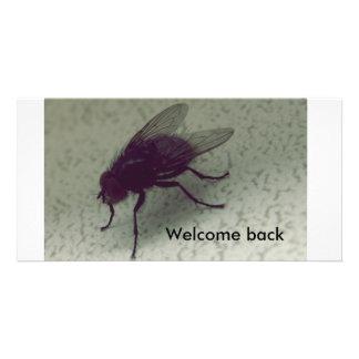 Boa vinda para trás cartoes com foto