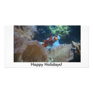 Boas festas! cartões com fotos