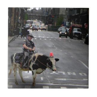 Bobina do vaqueiro