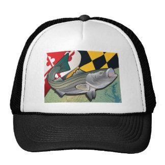 Bodião do cidadão de Maryland Boné