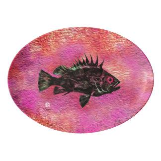 Bodião no rosa - bandeja de Quillback do serviço