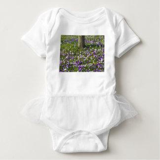 Body Para Bebê Açafrões do campo de flores na grama do primavera