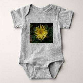 Body Para Bebê Apenas para o bebê