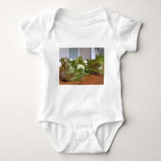 Body Para Bebê Avelã verdes frescas em uma mesa de madeira