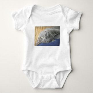 Body Para Bebê Bodysuit do bebê: Relaxe! Gato de ronrom cinzento