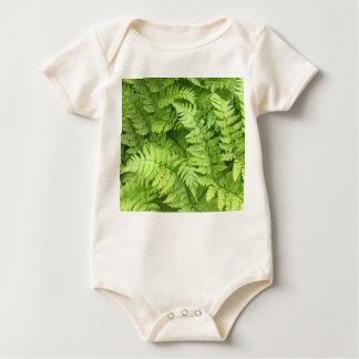 Body Para Bebê Bodysuit verde do bebê da samambaia