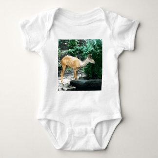 Body Para Bebê Bongos do safari