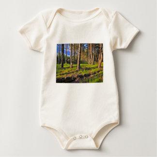 Body Para Bebê Bosque de verão no luzir de tarde