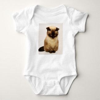 Body Para Bebê Cabelo curto britânico de Mieze do animal de