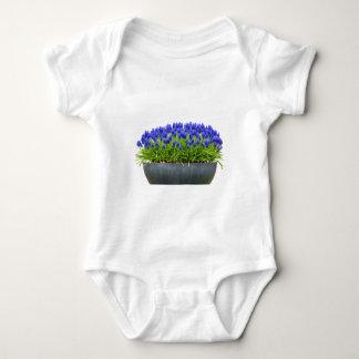 Body Para Bebê Caixa cinzenta da flor do metal com os jacintos de