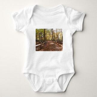 Body Para Bebê Caminhada da queda no parque e nas cores em