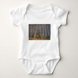 Body Para Bebê Caminhada nas madeiras