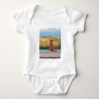 Body Para Bebê Cão só que olha no passo de Gibraltar
