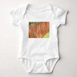 Body Para Bebê Cavalo marrom árabe na ideia do fim do pasto da