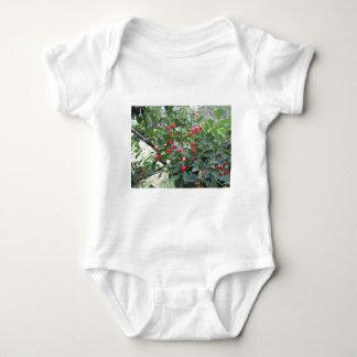Body Para Bebê Cerejas vermelhas de Montmorency na árvore no