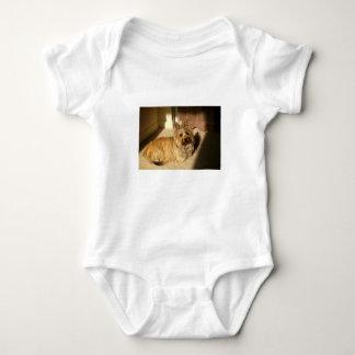 Body Para Bebê Colocação do terrier de monte de pedras