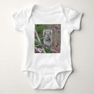 Body Para Bebê Comer do esquilo