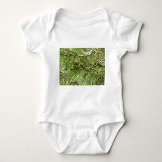 Body Para Bebê Cones imaturos do homem ou do pólen do pinheiro