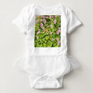 Body Para Bebê Corriolas cor-de-rosa Bush