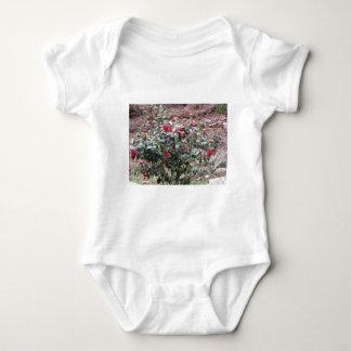 Body Para Bebê Cultivar antigo da flor do japonica da camélia