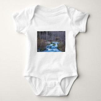 Body Para Bebê Derretimento do primavera fora do fluxo para baixo